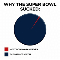 Super Bowl: WHY THE SUPER BOWL  SUCKED:  MOST BORING GAME EVER  THE PATRIOTS WON