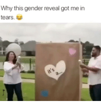 Drunk, Memes, and Hell: Why this gender reveal got me in  tears. Look drunk ahh hell 😭😂😂