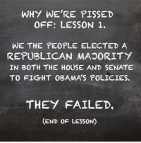Memes, House, and Http: WHY WE'RE PISSED  OFF: LESSON 1.  WE THE PEOPLE ELECTED A  REPUBLICAN MAJORITY  IN BOTH THE HOUSE AND SENATE  TO FIGHT 0BAMA'S POLICIES.  THEY FAILED  (END OF LESSON Do you think they get it now? -- Check out Our 2nd Amendment Apparel: http://goo.gl/YQERIk