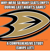 Logic, Memes, and National Hockey League (NHL): WHY WERE SOMANYSEATSEMPTY  DURING LAST NIGHTS GAME?  @nhl ref logic  ACOMPREHENSIVE STUDY  OSWIPE LEFT] Here are the reasons why you saw so many empty seats in that first period last night. Let me know what you guys think below.