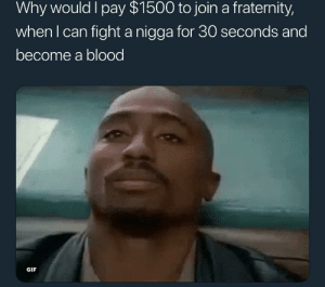 Fraternity, Gif, and Fight: Why would I pay $1500 to join a fraternity,  whenl can fight a nigga for 30 seconds and  become a blood  GIF Honestly..