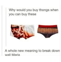 Ass, Break, and Mean: Why would you buy thongs when  you can buy these  A whole new meaning to break down  wall Maria Whoever cropped this before me sucks ass at it - Inder