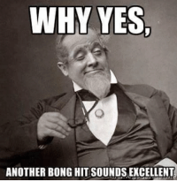 Memes, Bong, and Bong Hit: WHY YES  ANOTHER BONG HIT SOUNDSEXCELLENT Saturday night bong rips!! Who's in?