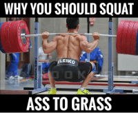 Mother, Grass, and Beat: WHY YOU SHOULD SQUAT  LEHKO  ASS TO GRASS When done correctly, you hit more muscles groups than your mother ever could with her slippers (when you were getting your ass beat).