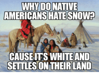 Snow, Advice Animals, and Americans: WHYDONATIVE  AMERICANS  HATE SNOW?  CAUSEITS WHITEAND  SETTLESON THEIR LANTD Sounds about right.