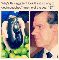 Meme, Memes, and 🤖: Why's this eggplant look like it's trying to  get impeached? (meme of the year 1974)  hig @stuffthatlookslikestuff would have loved meme'ing in the 70's. Check out @stuffthatlookslikestuff for incredible comparisons!