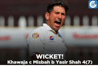 Memes, 🤖, and Wicket: WICKET!  Khawaja c Misbah b Yasir Shah 4C7) AUS vs PAK, 1st Test, Day 1: AUS -  75/2 (24.4) | Usman Khawaja dismissed for 4.
