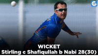 Memes, 🤖, and Eds: WICKET  Stirling c Shafiqullah b Nabi 28C30) AFG v IRE , 4th ODI: IRE - 50/1 (11) | W Porterfield - 1*(4), Ed Joyce - 21*(32) | Target - 221