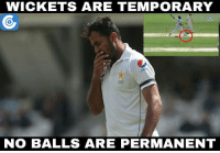 Wahab Riaz has bowled 8 no-balls - including one delivery which clean bowled David Warner - in his eight over spell far.: WICKETS ARE TEMPORARY  202  NO BALLS ARE PERMANENT Wahab Riaz has bowled 8 no-balls - including one delivery which clean bowled David Warner - in his eight over spell far.