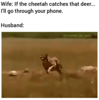No bitch you aren't allowed to do this 😂😂 follow @foloply for more dankness: Wife: If the cheetah catches that deer...  I'll go through your phone.  Husband:  memes by andy No bitch you aren't allowed to do this 😂😂 follow @foloply for more dankness