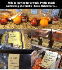 Memes, Alzheimer's, and Wife: Wife is leaving for a week. Pretty much  confirming she thinks I have Alzheimer's...  PAHJ  ORN  fftun  oit  tne tuna  NO LIDS  FUR  shet  memes.com DVCq