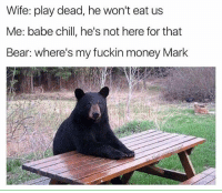 Memes, Babes, and Bear: Wife: play dead, he won't eat us  Me: babe chill, he's not here for that  Bear: where's my fuckin money Mark Uh, bear with me here.  @thefunnyintrovert