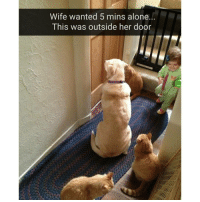 "Being Alone, Funny, and Ted: Wife wanted 5 mins alone.  This was outside her door ""We all worry about you Karen"" (@hilarious.ted)"