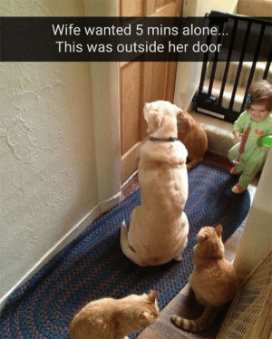 Hurry up, mother.: Wife wanted 5 mins alone...  This was outside her door Hurry up, mother.