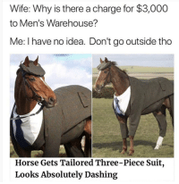 Horse, Wife, and Idea: Wife: Why is there a charge for $3,000  to Men's Warehouse?  Me: I have no idea. Don't go outside tho  Horse Gets Tailored Three-Piece Suit,  Looks Absolutely Dashing