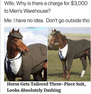 This made my day: Wife: Why is there a charge for $3,000  to Men's Warehouse?  Me: I have no idea. Don't go outside tho  Horse Gets Tailored Three-Piece Suit,  Looks Absolutely Dashing This made my day