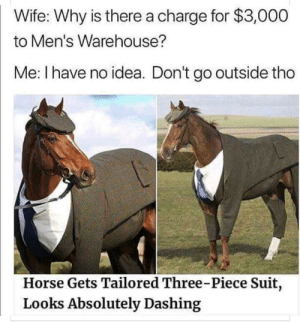 title: Wife: Why is there a charge for $3,000  to Men's Warehouse?  Me: I have no idea. Don't go outside tho  Horse Gets Tailored Three-Piece Suit,  Looks Absolutely Dashing title