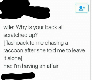 Being Alone, Raccoon, and Wife: wife: Why is your back all  scratched up?  [flashback to me chasing a  raccoon after she told me to leave  it alone]  me: I'm having an affair