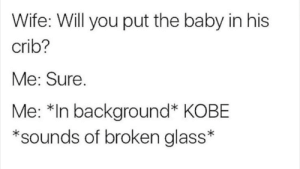 Kobe, Wife, and Baby: Wife: Will you put the baby in his  crib?  Me: Sure.  Me: *In background* KOBE  *sounds of broken glass*