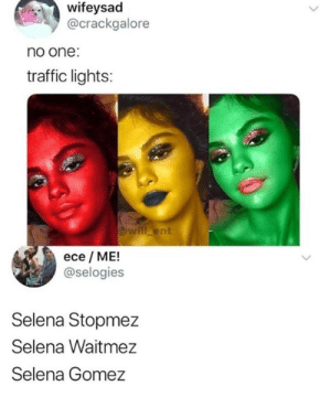 Instagram: @punsonly: wifeysad  @crackgalore  no one:  traffic lights:  will ent  ece ME!  @selogies  Selena Stopmez  Selena Waitmez  Selena Gomez Instagram: @punsonly