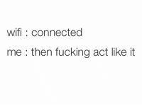 Fucking, Memes, and Best: wifi: connected  me : then fucking act like it Follow @girlsthinkimfunny for the best memes
