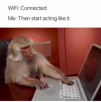 Connected, Wifi, and Acting: WiFi: Connected  Me: Then start acting likeit The absolute worst 😤😅