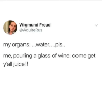 @middleclassfancy is by far the funniest page on Instagram: Wigmund Freud  @AdulteRus  my organs: ..water...pls..  me, pouring a glass of wine: come get  y'all juice!! @middleclassfancy is by far the funniest page on Instagram