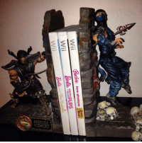 Barbie, Mortal Kombat, and Tumblr: Wii  Barbie horse adventures  bte horse adventures  GROOM  Wii  GLAM  and The ree thewisestwizards: Check out my brutal new Mortal Kombat bookends.