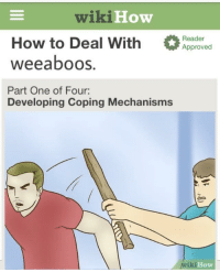 """Memes, How To, and Http: wiki How  How to Deal With ed  weeaboos.  Part One of Four:  Reader  Approved  Developing Coping Mechanisms  iki  How <p>Weeaboos via /r/memes <a href=""""http://ift.tt/2wSywW2"""">http://ift.tt/2wSywW2</a></p>"""