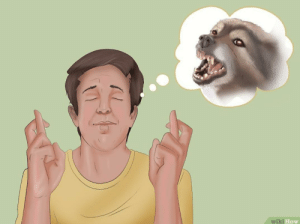 How to hopefully get rid of your neighbor's loud Dog for good, by setting up Fireworks this year.: wiki How How to hopefully get rid of your neighbor's loud Dog for good, by setting up Fireworks this year.