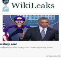 News, Obama, and Breaking News: WikiLeaks  SE  waluigi real  they keep him in an underground bunker and obama knows  22 December 201 <p>Breaking news!!!!1111</p>