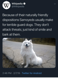 positive-memes:  Extremely good dogs!: Wikipedia  @Wikipedia  Because of their naturally friendly  dispositions Samoyeds usually make  for terrible guard dogs. They don't  attack threats; just kind of smile and  bark at them  2:46 PM 2/7/19 Twitter for Android positive-memes:  Extremely good dogs!