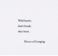 longing: Wild hearts  don't break;  they burn  Pieces of Longing
