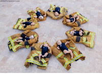 The newest members of the Phoenix Fire Department family took part in a special photo shoot to celebrate their recent arrivals.: Wildbird Photography via Storyful The newest members of the Phoenix Fire Department family took part in a special photo shoot to celebrate their recent arrivals.