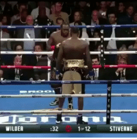 Tall dude not even boxing. He's slashing Kimbo Slice Jr to death... . @Regranned from @hahadavis - When it's past your bed time HaHaDavis BigFella NoSelfDoubt yougotknockedthefuckout: WILDEA  :32  1oF 12  STIVERNE Tall dude not even boxing. He's slashing Kimbo Slice Jr to death... . @Regranned from @hahadavis - When it's past your bed time HaHaDavis BigFella NoSelfDoubt yougotknockedthefuckout