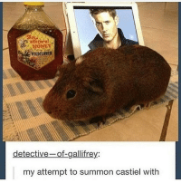 Memes, 🤖, and Detective: WILDFLOWER  detective  of gallifrey  my attempt to summon castiel with