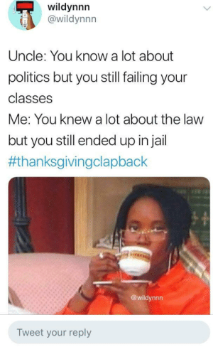 Dank, Memes, and Politics: wildynnn  @wildynnn  Uncle: You know a lot about  politics but you still failing your  classes  Me: You knew a lot about the law  but you still ended up injail  #thanksgivingclapback  @wildynnn  Tweet your reply Can't do the time, by ceasarsradio MORE MEMES