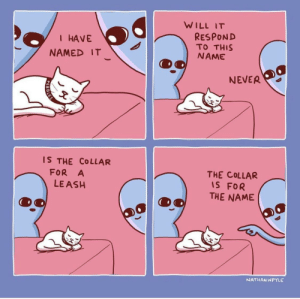 awesomacious:  A cute but accurate comic about cats: WILL IT  I HAVE  NAMED IT  RESPOND  TO THIS  NAME  NEVER  S THE COLLAR  FOR A  LE ASH  THE COLLAR  IS FOR  THE NAME  NATHANWPYLE awesomacious:  A cute but accurate comic about cats
