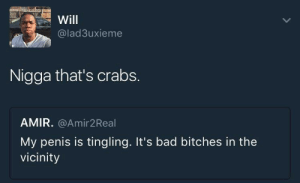 Bad, Penis, and Crabs: Will  @lad3uxieme  Nigga that's crabs.  AMIR. @Amir2Real  My penis is tingling. It's bad bitches in the  vicinity I think theres a shampoo for that