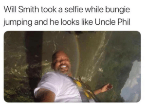 Dank, Memes, and Selfie: Will Smith took a selfie while bungie  jumping and he looks like Uncle Phil Like Father, Like Son by imbetaAFk MORE MEMES