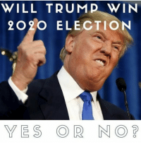 Memes, Trump, and 🤖: WILL TRUMP WIN  2020 ELECTION  YES OR NO What do you think?