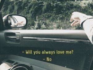 Love, Will, and You: Will you always love me?  No