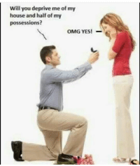 subtext: Will you deprive me of my  house and half of my  possessions?  OMG YES! subtext