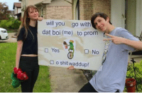 My Son Is Very Emotional And Addicted To Memes.: will you go with  dat boi (me) to prom  Yes  No  o shit waddup! My Son Is Very Emotional And Addicted To Memes.