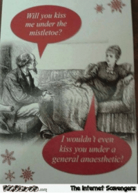 Funny, Internet, and Lmao: Will you kiss  me under the  mistletoe?  I wouldn t even  kiss you under a  general anaesthetic  com  The intemet Scavengers <p>LMAO pics collection  Funny memes and Internet goodies  PMSLweb </p>