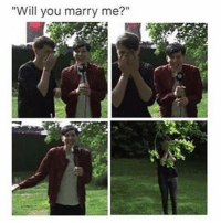 """Will you marry me?"" I've posted this on my other account before but THIS IS ONE OF MY FAVOURITE THINGS EVER ❤❤❤❤ qotd: What device are you using rn? aotd: iPhone 5s"