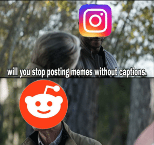 No you f***ing idiot.: will you stop posting memes without captions. No you f***ing idiot.
