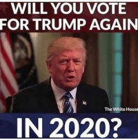 Memes, White House, and House: WILL YOU VOTE  FOR TRUMP AGAIN  The White House  IN 2020? Without a doubt, will you?