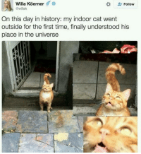 Doge, Memes, and History: Willa Koerner  6  Follow  @willak  On this day in history: my indoor cat went  outside for the first time, finally understood his  place in the universe ~Death —————————————–——— ❤️Follow for more!❤️ ——————————–—————— Admins: 🐱Jess: @they.all.die 💀Death: @killerbookskillerfeels 🍆Eggplant: @edwinwilke.photography 🦄Unicorn: @interweb.posts 🐶Doge: @lotusiaaa ——————————–——