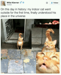Follow me @antisocialtv @lola_the_ladypug @x__social_butterfly__x @x__antisocial_butterfly__x: Willa Koerner '  @willak  Follow  On this day in history: my indoor cat went  outside for the first time, finally understood his  place in the universe Follow me @antisocialtv @lola_the_ladypug @x__social_butterfly__x @x__antisocial_butterfly__x
